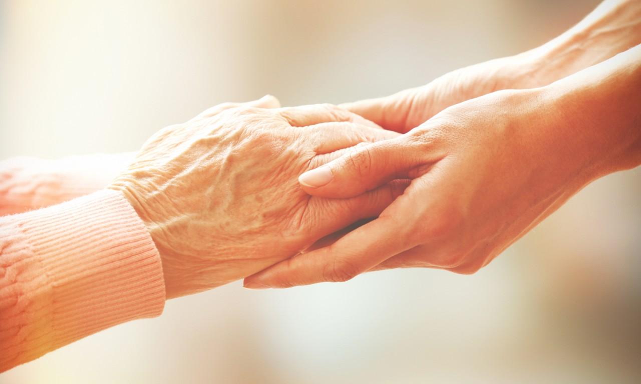 Ambulante Pflegedienste, Feriendialyse und Assistenz